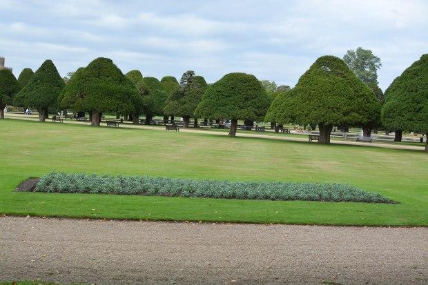 Hampton Court 15
