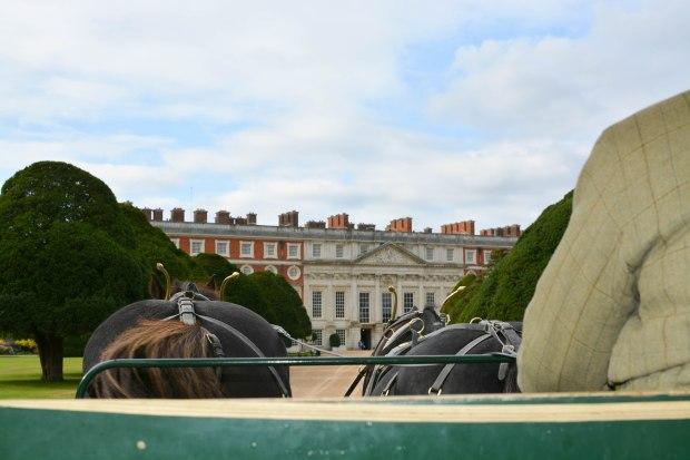 Hampton Court 17