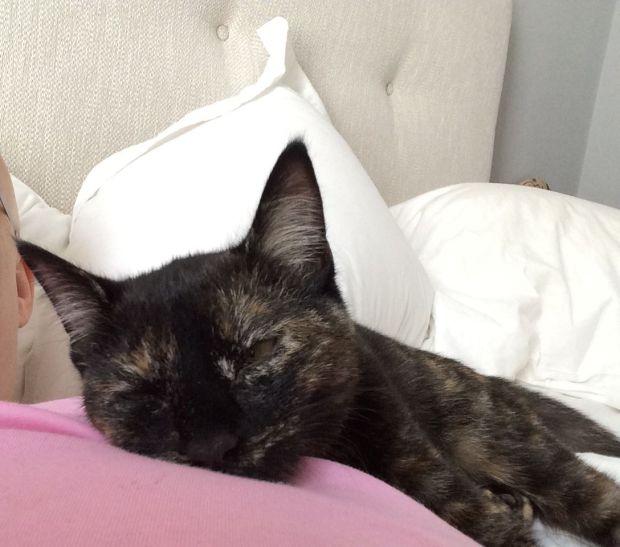 sleepy 5