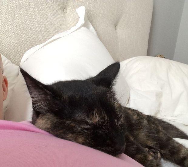 sleepy 7