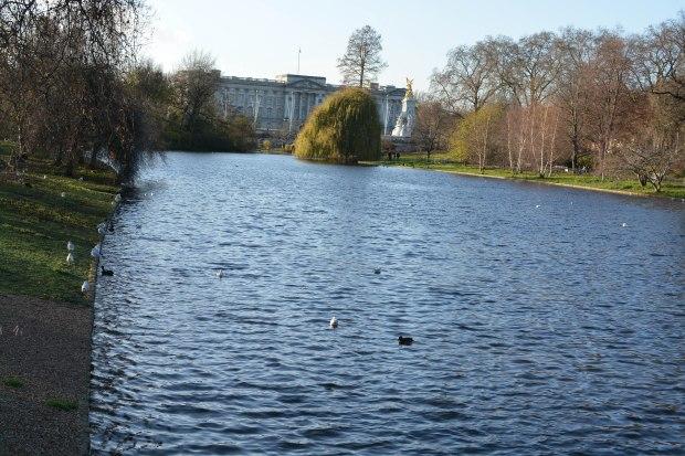 St James Park 5