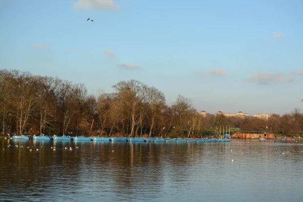 Hyde Park 21