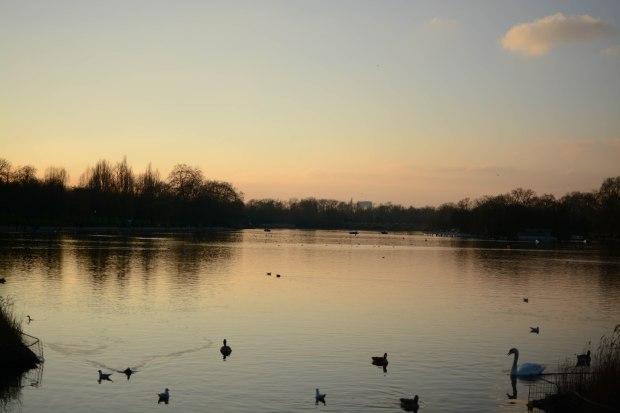 Hyde Park 27