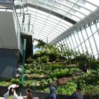 Sky Garden 9