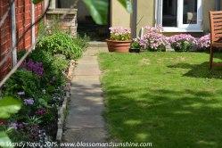 garden in May 10