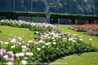 Kew Gardens. 25