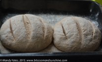 Lightly wholemealed bread. 3