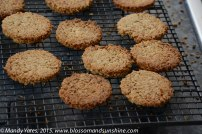 Oat biscuits 1