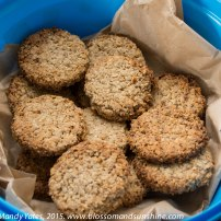 Oat biscuits 6