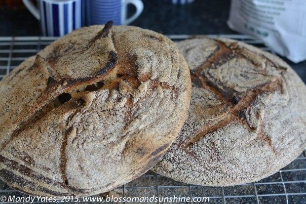 Tartine Bread 3