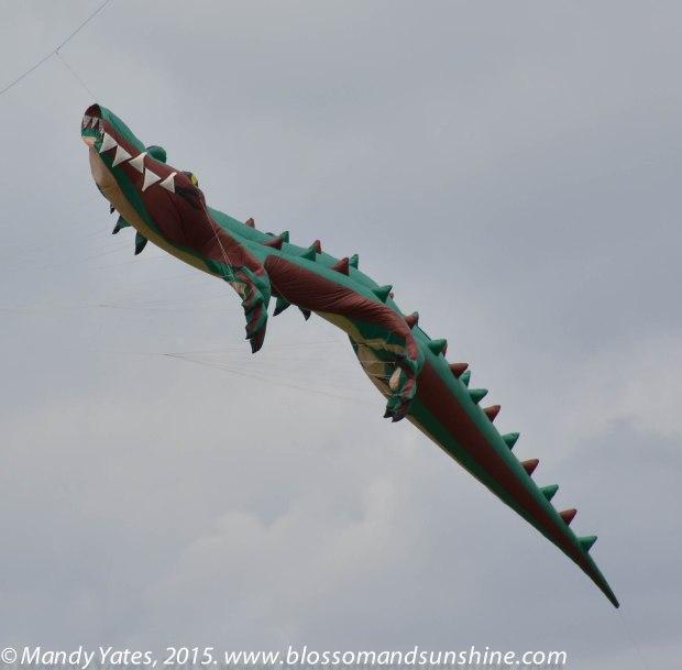 Kites 12