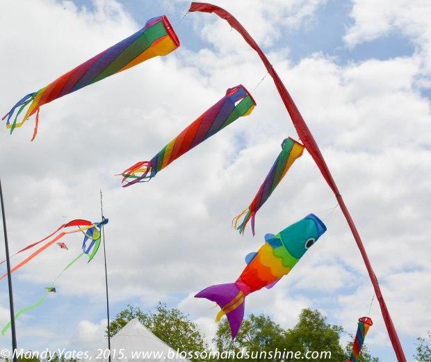 Kites 18
