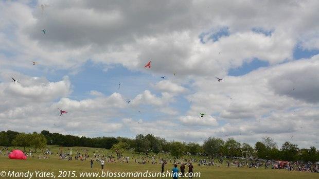 Kites 19