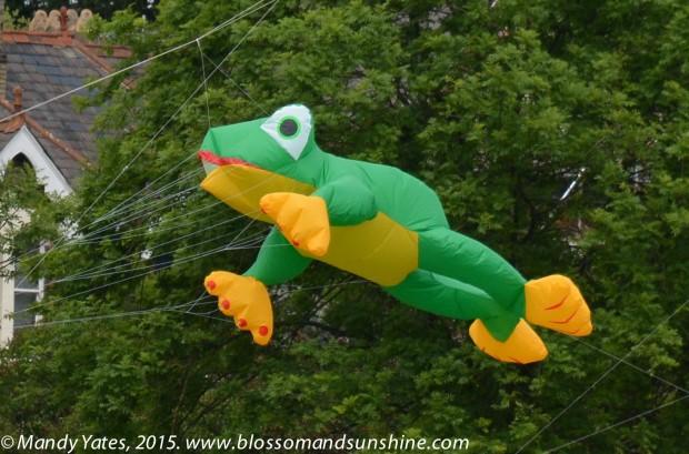 Kites 23