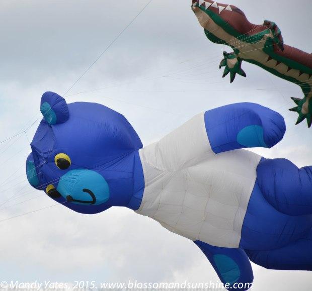 Kites 24