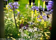 Hampton Court Flower Show 13