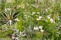 Hampton Court Flower Show 2