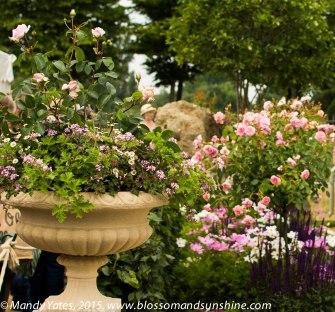 Hampton Court Flower Show 5