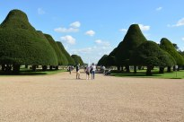 Hampton Court September 2015 11