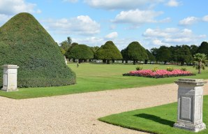 Hampton Court September 2015 15