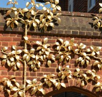 Hampton Court September 2015 2