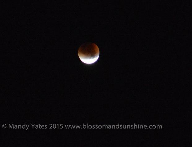 Moon. 2-2