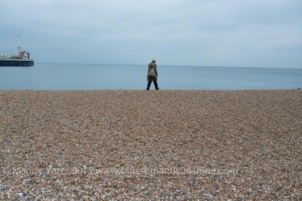 Brighton 14