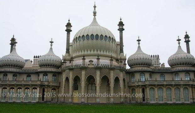 Brighton 22