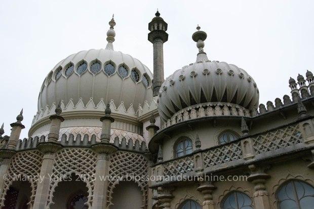 Brighton 23