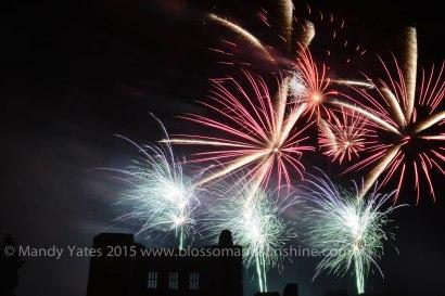 Fireworks 20