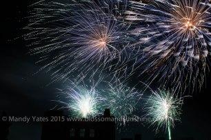 Fireworks 21