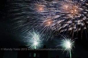 Fireworks 22