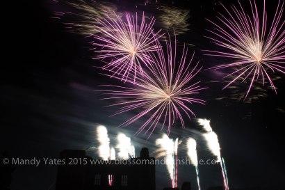 Fireworks 23