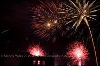 Fireworks 29
