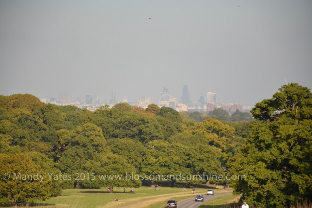 Richmond park 15