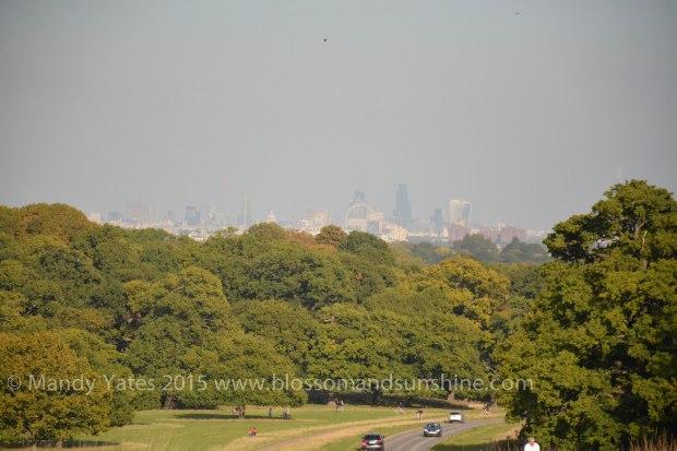 Richmond park 15