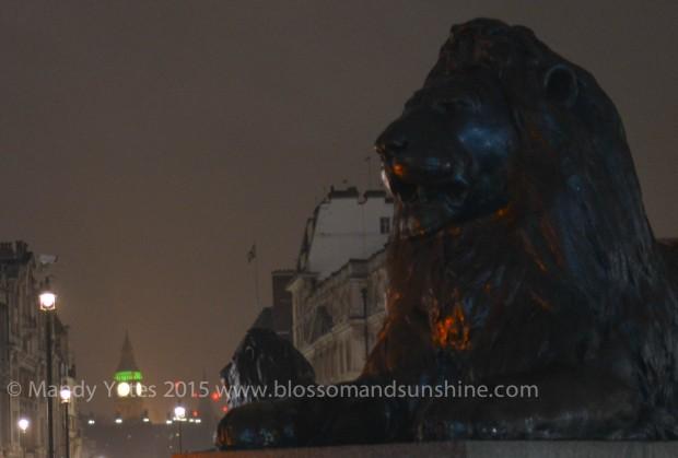 Trafalgar Square 8