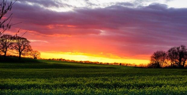 Spring sunset._
